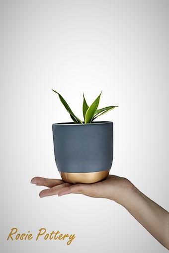 vietnamese-cement-plant-pot